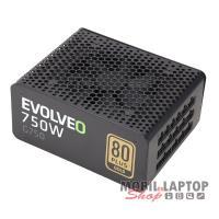 EVOLVEO G750 (750W) fekete tápegység