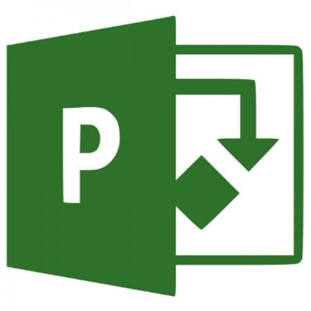 Microsoft Project Professional 2019 Elektronikus licenc szoftver